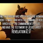 Vision of Christ Followers Persecuted in the Great Tribulation Period