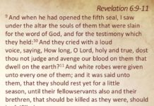 5th Seal of Revelation – Souls of Martyrs