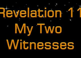 The Two Witnesses