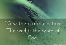 Sow a Seed – A Twisted Corrupted Gospel