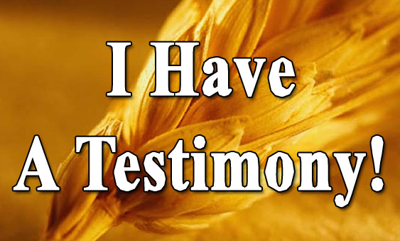 Testimony: - How Jesus Appeared Physically to me